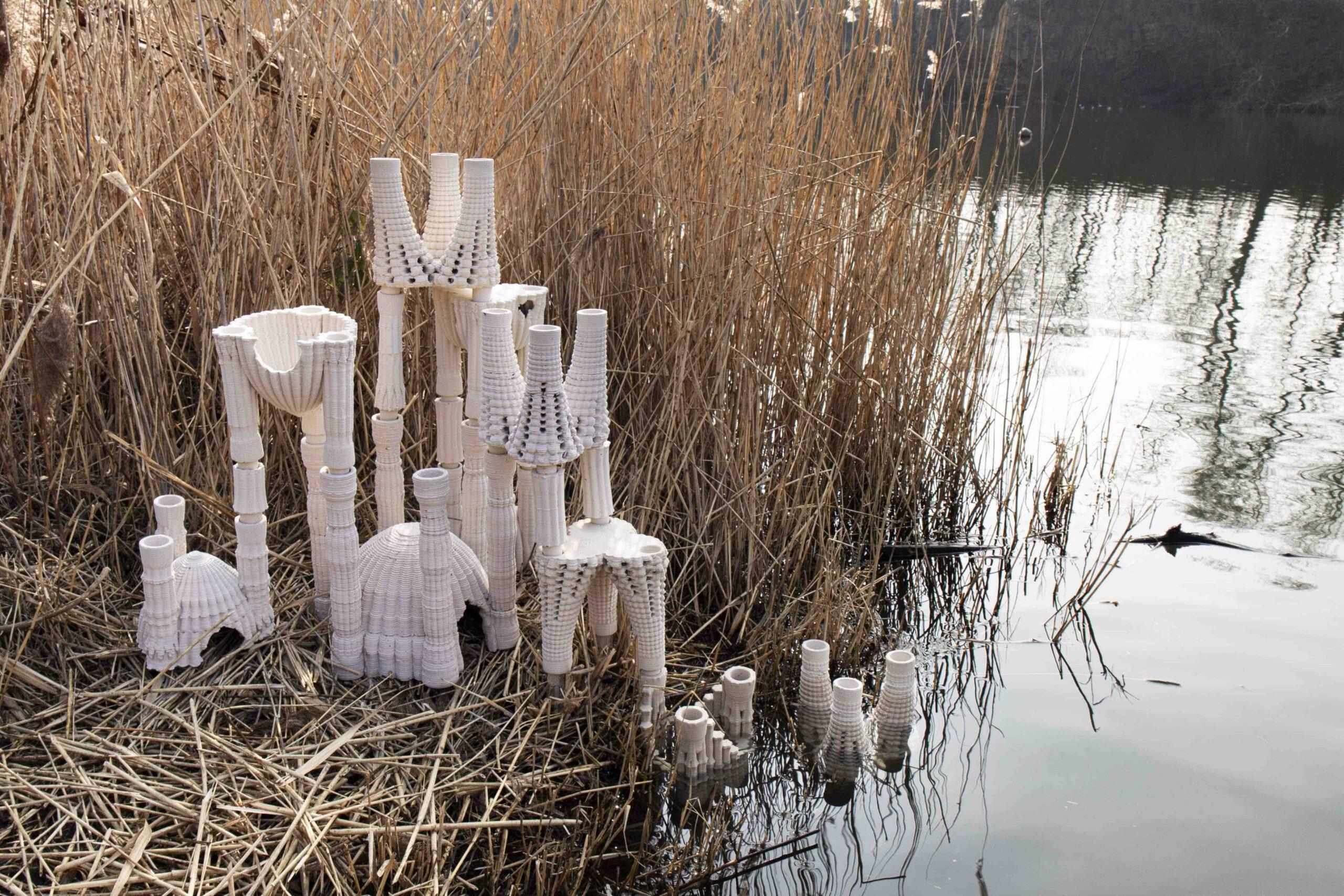 first symbiotic space in hildesheim, 3d printed clay clayprinting algorithmic design bioart